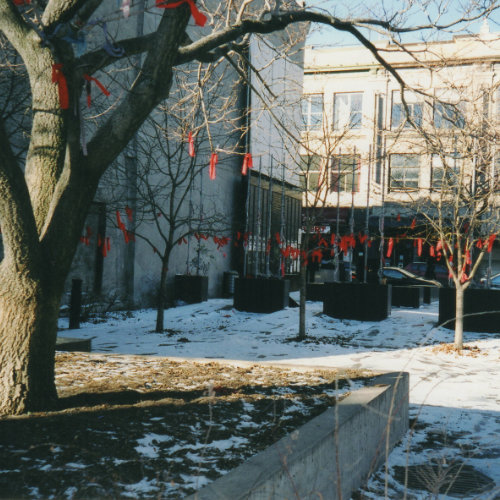 The Parc de l'espoir, some time between fall 1993 and winter 1994. Red ribbons, symbolizing HIV/AIDS, are tied to the trees. Photo credit: René LeBoeuf. Year: [1993-1994] AGQ-F0107/ F202 Fonds Michael Hendricks/René LeBoeuf. Collection of the Archives gaies du Québec.